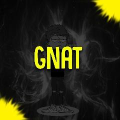 Avatar Gnatek